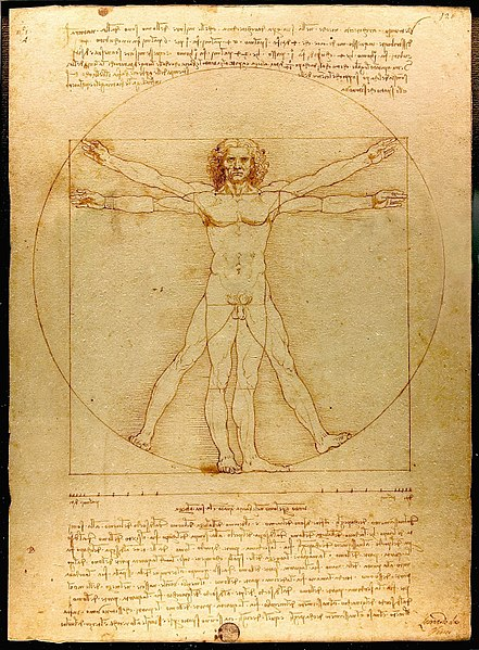 Da vinci, Vitruvius Adamı,